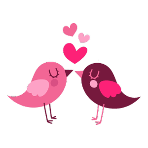 ptáci Láska